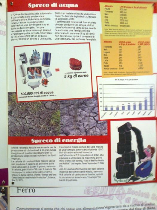 mostra animalista sui macelli 20111101 1774507275 - FA' LA COSA GIUSTA 2011 - MOSTRA ANIMALISTA