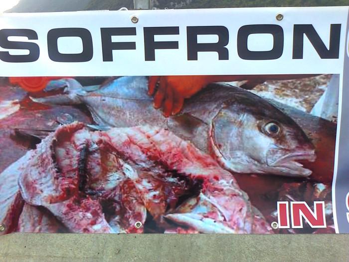 presidio caccia e pesca 20120331 1352671639 - Presidio alla Fiera Caccia e Pesca di Riva del Garda 31.03.2012 - 2012-