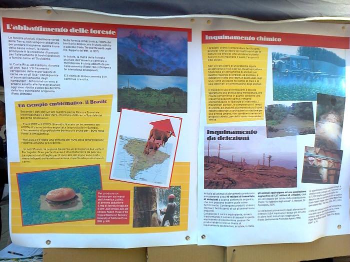 settimana veg mondiale   1 7 ottobre 20111016 1598293142 - TRENTO 15.10.2011- TAVOLO INFORMATIVO PER LA SETTIMANA VEGETARIANA MONDIALE - 2011-