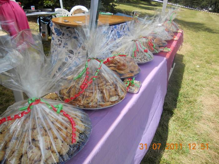 tavoli animal 20130212 1393327968 - FESTA DELLE ASSOCIAZIONI - LOC. 7 LARICI - COREDO (TN) - 31.07.2011