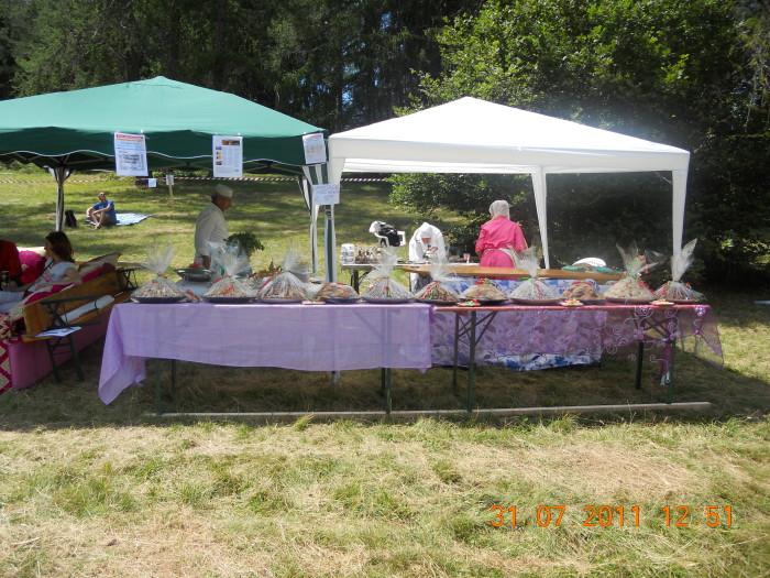 tavoli animal 20130212 1780316114 - FESTA DELLE ASSOCIAZIONI - LOC. 7 LARICI - COREDO (TN) - 31.07.2011