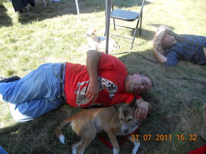 tavoli animal 20130212 1930543086 - FESTA DELLE ASSOCIAZIONI - LOC. 7 LARICI - COREDO (TN) - 31.07.2011