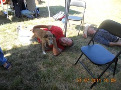tavoli animalisti 20110802 1741356209 960x300 - FESTA DELLE ASSOCIAZIONI - LOC. 7 LARICI - COREDO (TN) - 31.07.2011