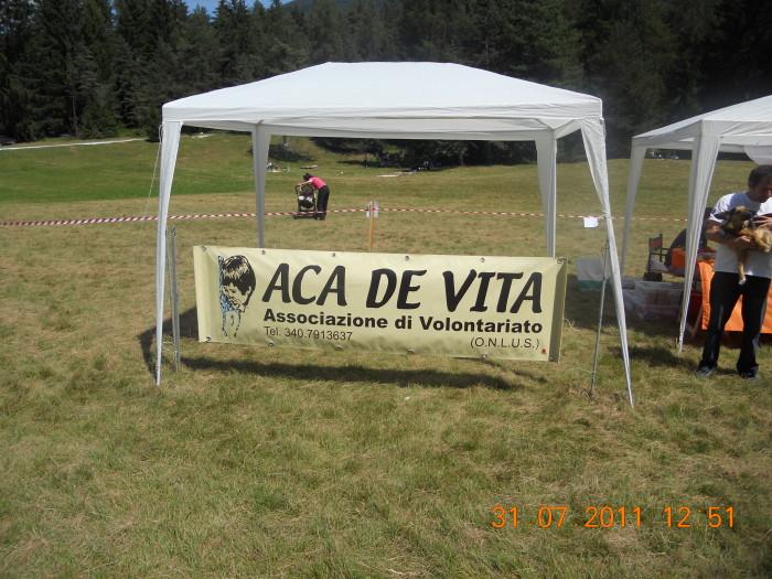 tavoli animalisti 20110802 1970199259 - FESTA DELLE ASSOCIAZIONI - LOC. 7 LARICI - COREDO (TN) - 31.07.2011