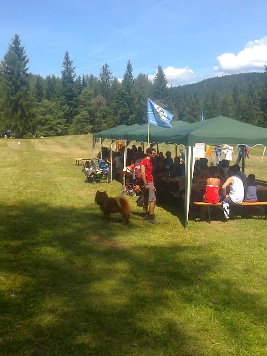 tavoli animalisti 20110805 1672757519 - FESTA DELLE ASSOCIAZIONI - LOC. 7 LARICI - COREDO (TN) - 31.07.2011