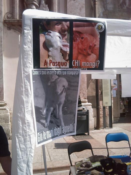 tavolo info sul massacro di agnelli e capretti a pa 20130212 1012504699 - 16 aprile 2011 - TAVOLO INFORMATIVO SU MASSACRO AGNELLI E CAPRETTI PERIODO PASQUALE