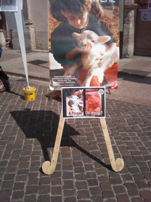 tavolo info sul massacro di agnelli e capretti a pa 20130212 1386336836 - 16 aprile 2011 - TAVOLO INFORMATIVO SU MASSACRO AGNELLI E CAPRETTI PERIODO PASQUALE - 2011-
