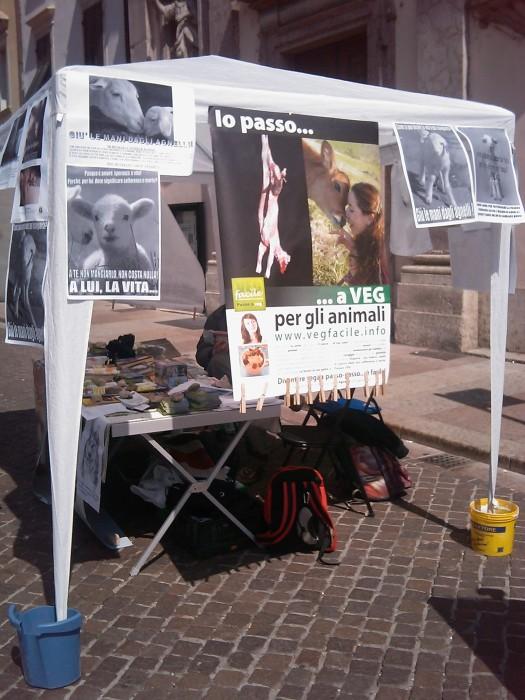 tavolo info sul massacro di agnelli e capretti a pa 20130212 1491936993 - 16 aprile 2011 - TAVOLO INFORMATIVO SU MASSACRO AGNELLI E CAPRETTI PERIODO PASQUALE - 2011-