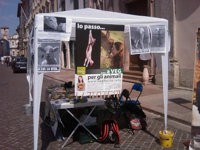tavolo info sul massacro di agnelli e capretti a pa 20130212 1545862416 - 16 aprile 2011 - TAVOLO INFORMATIVO SU MASSACRO AGNELLI E CAPRETTI PERIODO PASQUALE - 2011-