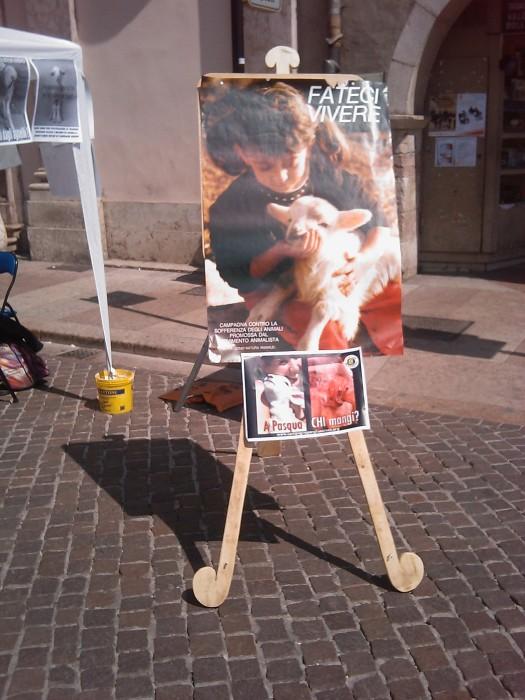 tavolo info sul massacro di agnelli e capretti a pa 20130212 1781499761 - 16 aprile 2011 - TAVOLO INFORMATIVO SU MASSACRO AGNELLI E CAPRETTI PERIODO PASQUALE - 2011-
