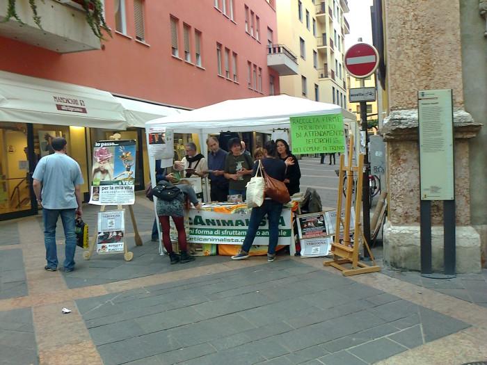 tavolo_informativo_stile_di_vita_vegan_e_sul_massacro_dei_cani_in_ucr_20130212_1890056523