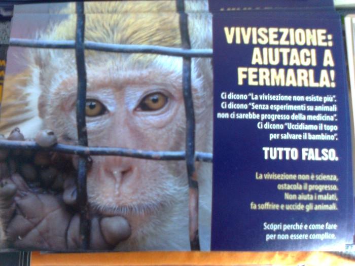 tavolo informativo suglio orrori della vivisezione 20120304 1422592893 - TRENTO - 03.03.2012 - TAVOLO INFORMATIVO SUGLI ORRORI DELLA VIVISEZIONE