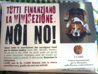 tavolo informativo suglio orrori della vivisezione 20120304 1573876678 960x300 - TRENTO - 03.03.2012 - TAVOLO INFORMATIVO SUGLI ORRORI DELLA VIVISEZIONE