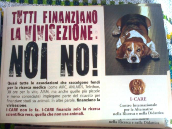 tavolo informativo suglio orrori della vivisezione 20120304 1573876678 - TRENTO - 03.03.2012 - TAVOLO INFORMATIVO SUGLI ORRORI DELLA VIVISEZIONE