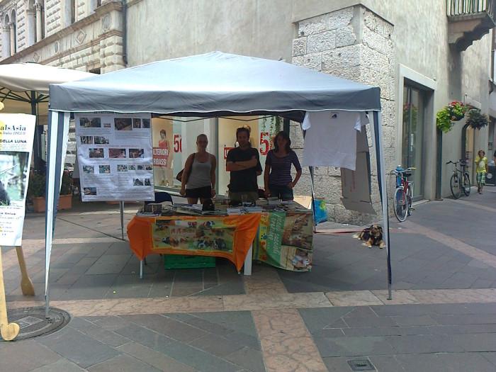 tavolo_per_gli_orsi_delle_fattorie_della__20130212_1064049925