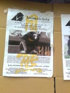 tavolo per gli orsi delle fattorie della  20130212 1194727073 960x300 - TAVOLO ANIMALS ASIA DEL 16.07.2011