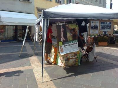 tavolo per gli orsi delle fattorie della  20130212 1396675189 960x300 - TAVOLO ANIMALS ASIA DEL 16.07.2011