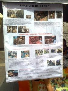 tavolo per gli orsi delle fattorie della bile 20110717 1236713773 960x300 - TAVOLO ANIMALS ASIA DEL 16.07.2011