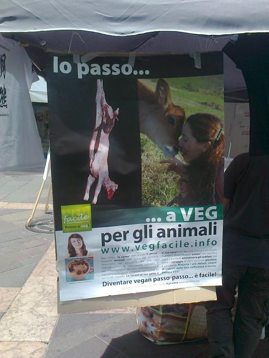 tavolo per gli orsi delle fattorie della bile 20110717 1802635380 - TAVOLO ANIMALS ASIA DEL 16.07.2011