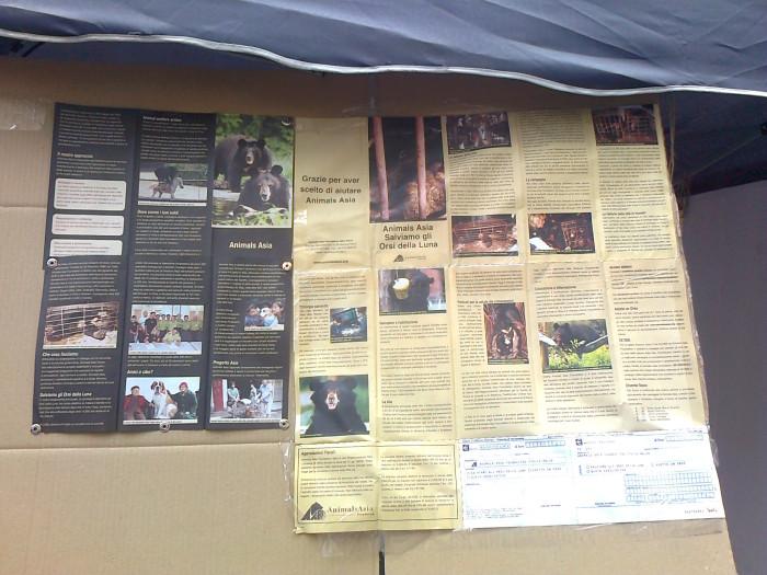 tavolo per gli orsi delle fattorie della bile 20110717 2059332744 - TAVOLO ANIMALS ASIA DEL 16.07.2011