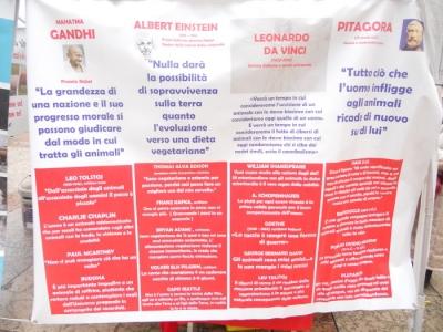 trento 03 dicembre fiacco 20130212 1422395127 960x300 - 03 dicembre 2011 Trento fiaccolata per denunciare lo sterminio degli animali nel periodo natalizio (e non solo!) - 2011-