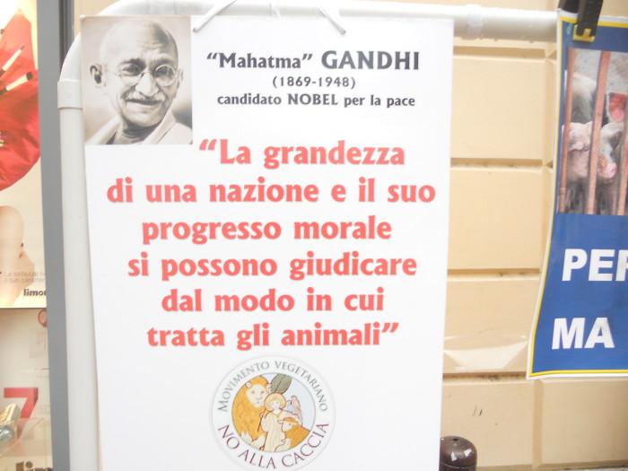 trento 03 dicembre fiacco 20130212 1572613799 - 03 dicembre 2011 Trento fiaccolata per denunciare lo sterminio degli animali nel periodo natalizio (e non solo!)