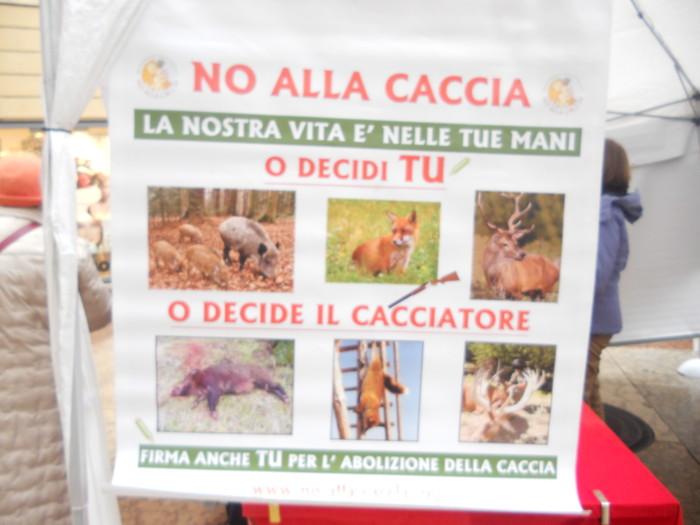 trento 03 dicembre fiacco 20130212 1726355100 - 03 dicembre 2011 Trento fiaccolata per denunciare lo sterminio degli animali nel periodo natalizio (e non solo!)