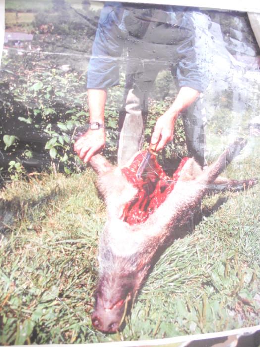 trento 03 dicembre fiacco 20130212 1788532939 - 03 dicembre 2011 Trento fiaccolata per denunciare lo sterminio degli animali nel periodo natalizio (e non solo!)