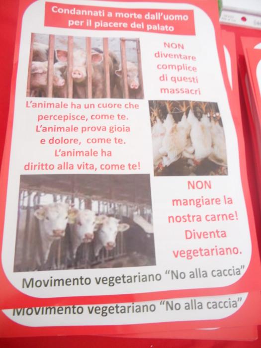 trento 03 dicembre fiaccolata 20111203 1631767964 - 03 dicembre 2011 Trento fiaccolata per denunciare lo sterminio degli animali nel periodo natalizio (e non solo!)