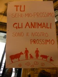 trento 03 dicembre fiaccolata 20111203 1915136402 960x300 - 03 dicembre 2011 Trento fiaccolata per denunciare lo sterminio degli animali nel periodo natalizio (e non solo!)