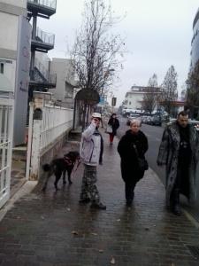 trento dicembre  20130212 1484628038 960x300 - Campagna contro le pellicce - Trento dicembre 2012 - 2012-