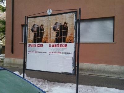 trento dicembre  20130212 1613364071 960x300 - Campagna contro le pellicce - Trento dicembre 2012 - 2012-