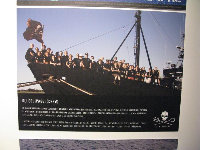 trento veg   16 settembre 2012 20120926 1410634653 - TRENTO VEG 2012 - 2012-