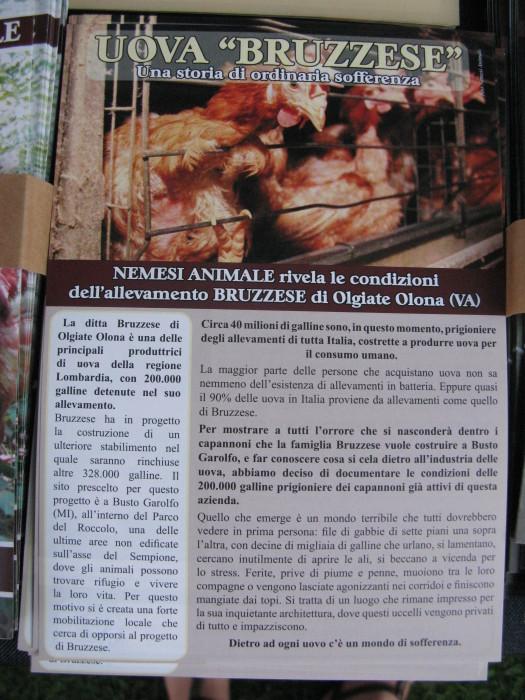 trento veg   16 settembre  20130212 1785835609 - TRENTO VEG 2012 - 2012-
