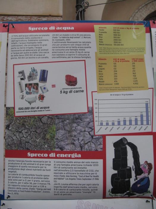 trento veg   16 settembre  20130212 2016598904 - TRENTO VEG 2012 - 2012-
