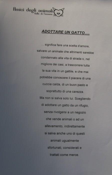 trento veg   16 settembre  20130212 2058883815 - TRENTO VEG 2012 - 2012-