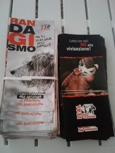 vegan fest 2011   camaiore 20110427 1009417472 960x300 - VEGAN FEST 2011- 22/25 APRILE - CAMARIORE