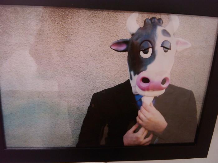 vegan fest 2011   camaiore 20110427 1064265709 - VEGAN FEST 2011- 22/25 APRILE - CAMARIORE