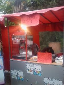 vegan fest 2011   camaiore 20110427 1108355822 960x300 - VEGAN FEST 2011- 22/25 APRILE - CAMARIORE