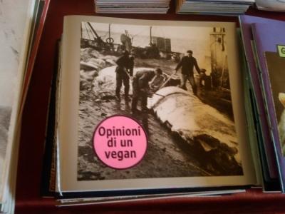 vegan fest 2011   camaiore 20110427 1168867309 960x300 - VEGAN FEST 2011- 22/25 APRILE - CAMARIORE