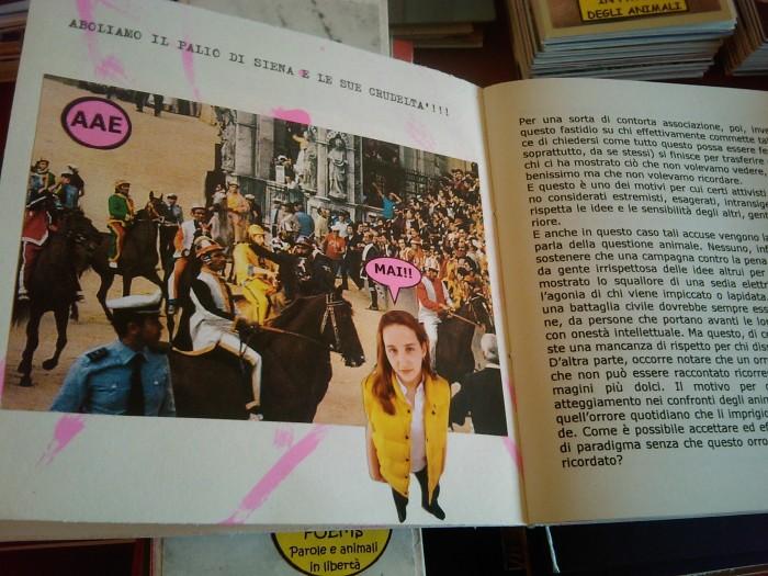 vegan fest 2011   camaiore 20110427 1174053731 - VEGAN FEST 2011- 22/25 APRILE - CAMARIORE
