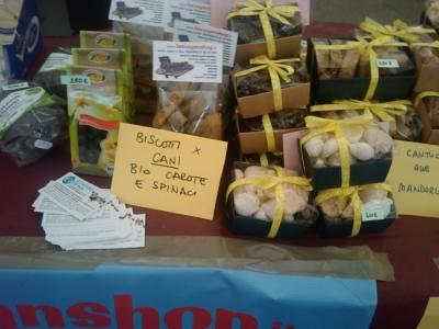 vegan fest 2011   camaiore 20110427 1211192046 960x300 - VEGAN FEST 2011- 22/25 APRILE - CAMARIORE