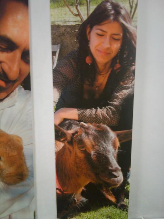 vegan fest 2011   camaiore 20110427 1214657265 - VEGAN FEST 2011- 22/25 APRILE - CAMARIORE