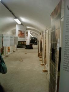 vegan fest 2011   camaiore 20110427 1220598126 960x300 - VEGAN FEST 2011- 22/25 APRILE - CAMARIORE