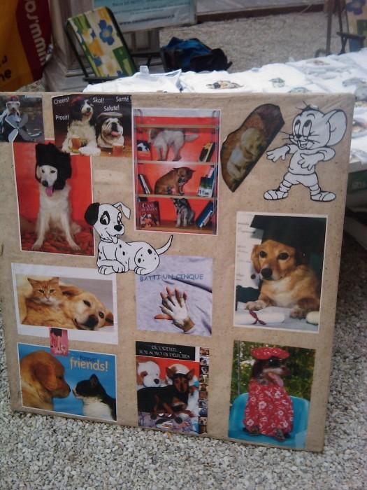 vegan fest 2011   camaiore 20110427 1221501098 - VEGAN FEST 2011- 22/25 APRILE - CAMARIORE