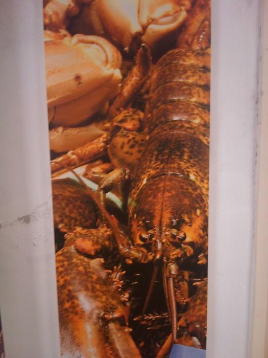 vegan fest 2011   camaiore 20110427 1302913884 - VEGAN FEST 2011- 22/25 APRILE - CAMARIORE