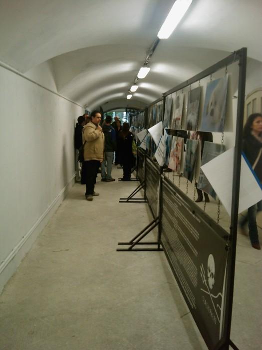 vegan fest 2011   camaiore 20110427 1400925610 - VEGAN FEST 2011- 22/25 APRILE - CAMARIORE