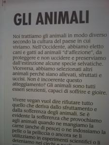vegan fest 2011   camaiore 20110427 1408105671 960x300 - VEGAN FEST 2011- 22/25 APRILE - CAMARIORE