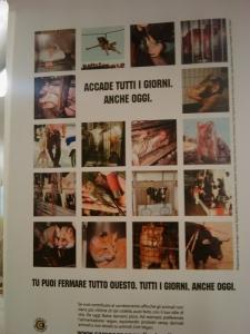 vegan fest 2011   camaiore 20110427 1420060450 960x300 - VEGAN FEST 2011- 22/25 APRILE - CAMARIORE