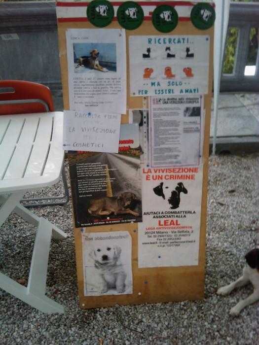 vegan fest 2011   camaiore 20110427 1438290510 - VEGAN FEST 2011- 22/25 APRILE - CAMARIORE
